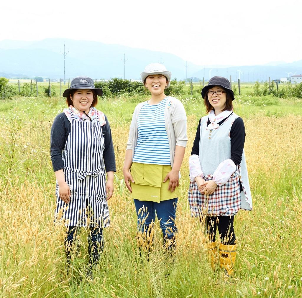 noriko_takahashi_kiji_top
